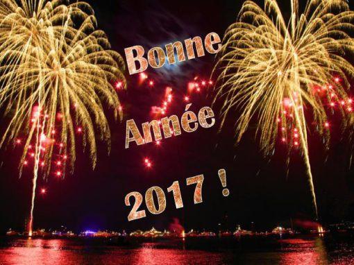 004-bonne-annee-2017